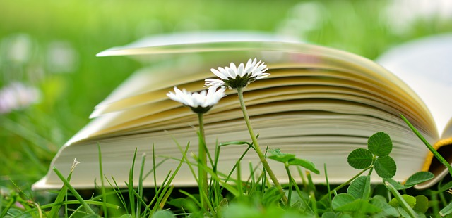 WHAT TO LOOK FOR IN A BOOK EDITOR